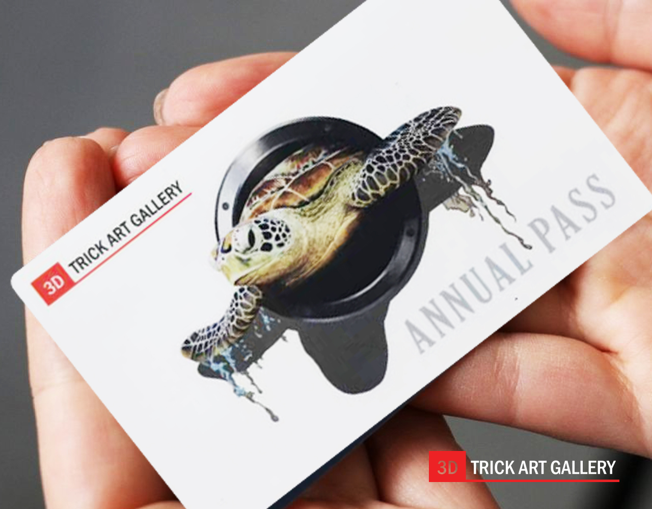 3D Trick Art Gallery annual pass