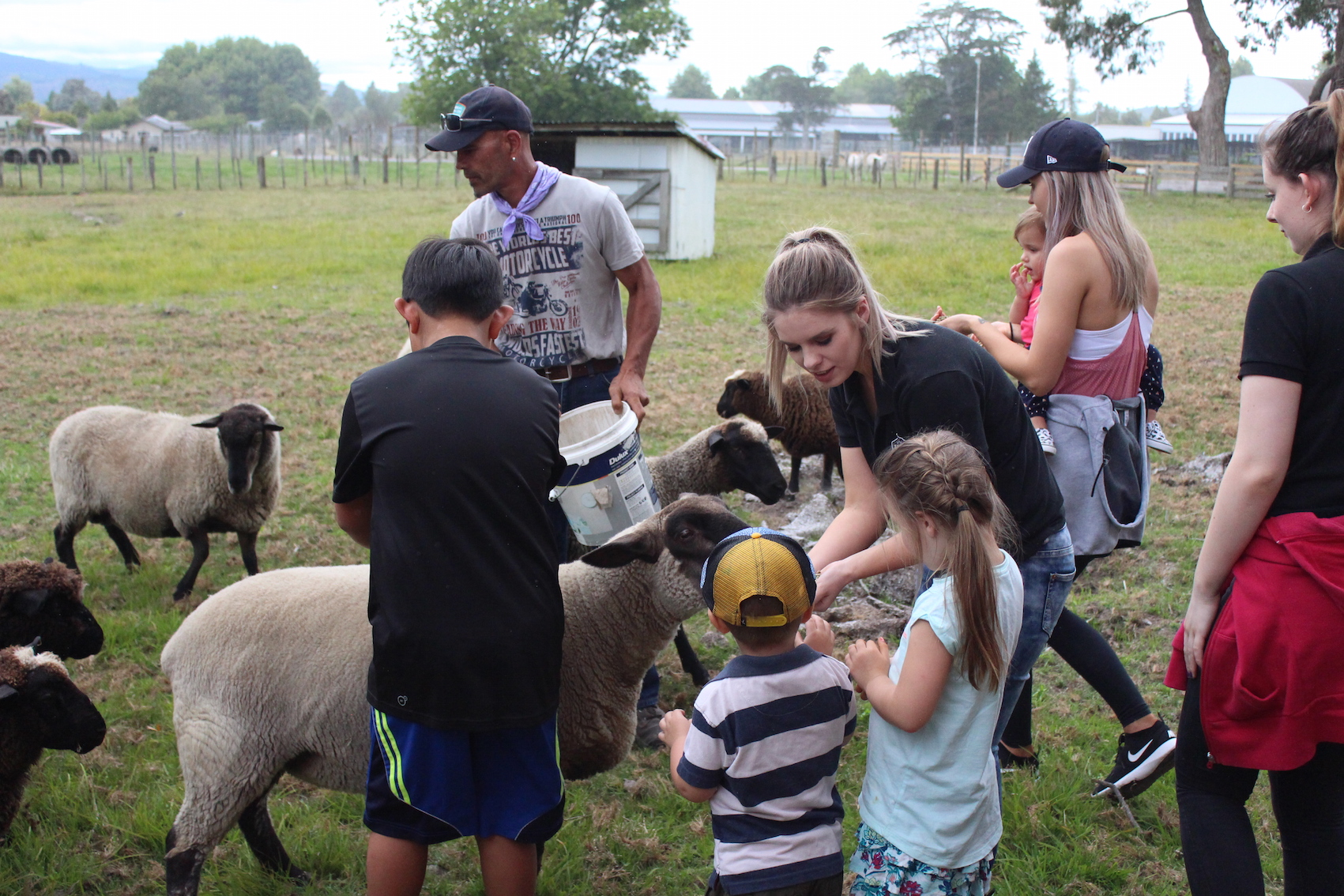 The Farm Tour for the long weekend