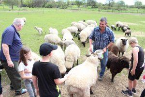 Rotorua Attractions The Farm Tour 01